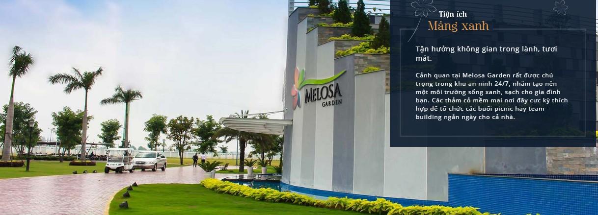 Melosa-garden-mang-xanh